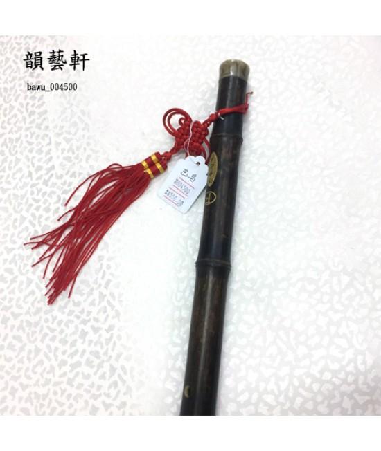 巴烏 (004500)
